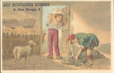 Aux Montagnes Suisses - Sheep Shearing