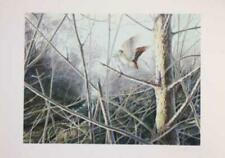 'Flushed Woodcock' - Limited Edition Signed Print by Owen Williams