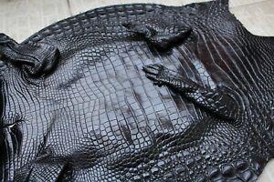 Big Size Genuine Real Alligator Crocodile Skin Leather Exotic Pelt taxidermy #C3