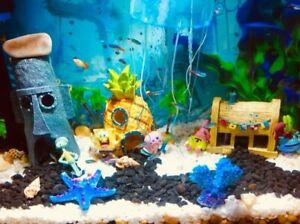 Squidward Aquarium Decorations House Shrimp Shelter Fish Tank Home Aquarium