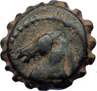 DEMETRIOS I Soter RARE R3 Ancient Seleukid Greek Coin HORSE ELEPHANT i67674