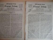 1885 87.86 Ludwig Richter Biographie Malerei 7 Seiten
