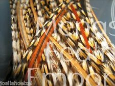 20 CREE GRIZZLY 100% WHITING / Rooster Saddle Hackle Feather hair extensions md