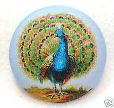 Peacock  Fabric Covered Button 1 & 1/2 inch