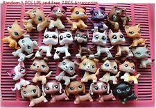 Authentic Littlest Pet Shop Lps Cats and Collie Dogs (5pcs Random) Shorthair Cat