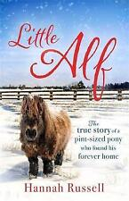 Little Alf: The true story of a pint-sized pony who found his forever home, Hann