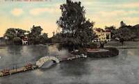 Rochester New York c1910 Postcard Willow Pond