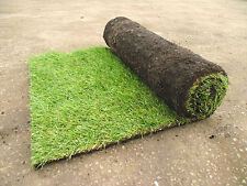Sportsman Quality Garden Lawn Turf Grass Only £2.99 Per Square Metre Fresh In