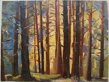Russian Soviet Oil Painting realism Landscape forest sunset 1950s y.