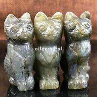 1.7''Natural labradorite cat quartz crystal skull hand carved carved cat random