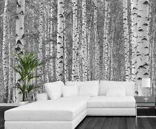 Birch Tree Forest (Black and White) 12' x 8' (3,66m x 2,44m)-Wall Mural