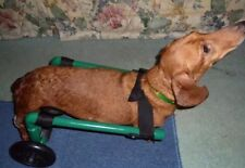 Dog Wheelchair/ Light Weight/ Comes Ready To Roll!