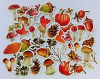 46 Aufkleber Pilze Wald Herbst Blätter Kinder basteln Scrapbooking Stickerbomb