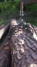 Fette Bärbel Holzzange  Verladezange 2 Reihig geschraubt nicht geschweißt.