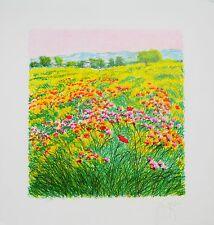 AZZINARI FRANCO litografia +cornice Fiori campo natura ginestre quadro grecoarte