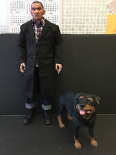 "SCALE 1/6 ROTTWEILER DOG PET DIORAMA 12"" ACTION FIGURE DRAGON DID ELITE FORCE"