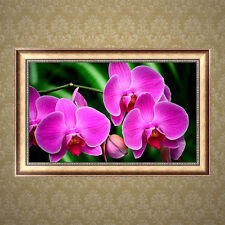Orchid 5D DIY Diamond Painting Flower Cross Stitch Home Decor Craft Full Diamond