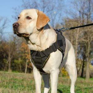 Labrador Dog Harness with Handle Small Medium Large Padded Nylon Chest Plate K9