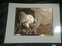 BIG GAME Copper-Etch Prints  By R.H. Palenske.  4 Prints