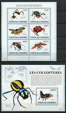 Comoros Comores 2009 MNH Beetles 6v M/S 1v S/S Coleopteres Insects Stamps