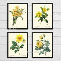 Unframed Botanical Print Set of 4 Antique Yellow Garden Flowers Home Wall Art