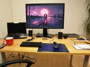 "Nec MultiSync PA301W-BK 30"" Monitor DP DVI USB-A QHD16:10 Gaming Schwarz IPS LED"