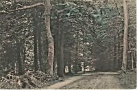 A Road in the Cemetery Pittsfield Massachusetts Ma Vintage Postcard 1908