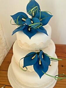 CELEBRATION CAKE TWO BLUE SPRAYS CRAFTED IN SUGAR,    PRICED TO SELL