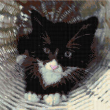 "Black Cat / Kitten - Hiding in Basket - Cross Stitch Kit 10""x10"" - 14 Count Aida"
