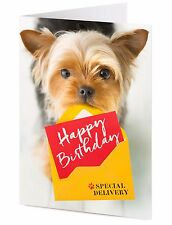 Yorkshire Terrier dog delivers special HAPPY BIRTHDAY greeting card