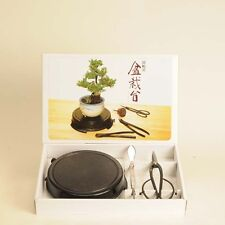 Bonsai Turntable & Care tools 3-piece set New From Japan