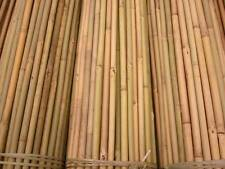 More details for 50 x 2.4m (8ft) tonkin bamboo canes plant support canes 14/16mm diameter