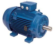 Electric Motor, Three Phase, 3ph, 3kW, 4 pole - 1400 rpm, WEG