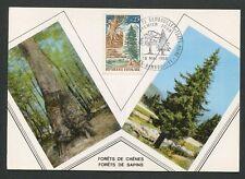 FRANCE MK 1968 FLORA WALD FOREST TREE BAUM BÄUME CARTE MAXIMUM CARD MC CM d8817