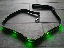 Rechargeable LED Dog/Pet Leash (Green and Black),  Brand New