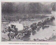 1901  --  DEPLACEMENT D UNE FAMILLE DE BOERS AU TRANSVALL  AFRIQUE DU SUD  3B027