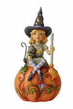 Jim Shore 6006702 Witch Sitting on Pumpkin 2020 Halloween