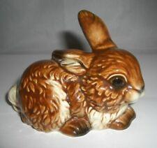 Hase von Goebel rabbit