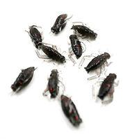 10 x Black Soft Plastic Crickets + Plastic Box - Insects Fishing Bait Fake Lure