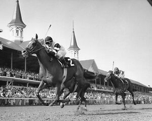 1978 Kentucky Derby AFFIRMED vs Alydar Glossy 8x10 Photo Print Racehorse Poster