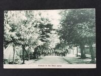 Vintage Postcard - WW1 Military #6 - Italian - Avenue In Main Camp