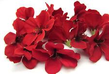 Red Begonia Flower Artificial Single Flower Floral Decor 30pcs 1.96'' Sale
