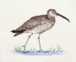 CURLEW wading water Bird  Full cross stitch kit all materials Fido Stitch Studio