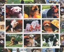 Carino PUPPY DOG Canine animali da compagnia Kirghizistan 2000 MNH STAMP SHEETLET
