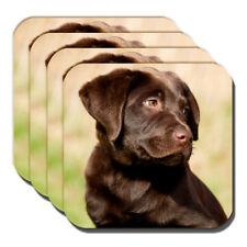 4 - Cioccolato Labrador cucciolo sottobicchieri GIOVANE LABORATORIO pupazzo
