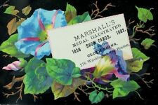 1882 Marshall's Medal Illustrated Show Cards Cloth Signs Morning Glories P72