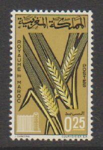 Marokko - 1966,Landwirtschaftliches Produkte,1st Serie Briefmarke - MNH - Sg 176
