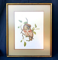 Lithograph Owl limited edition 52/250 Wildlife Artist Roger Simmons Framed Gift
