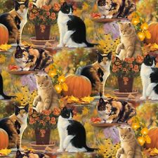 Fat Quarter Cats and Pumpkin Digitally Printed 100% Cotton Quilting Fabric