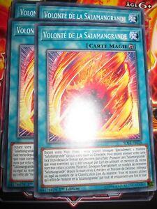 YU-GI-OH! COM PLAYSET (LOT DE 4) VOLONTE DE LA SALAMANGRANDE SDSB-FR026 NEUF ED1